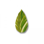 Zelené lístky (1,5x3cm)